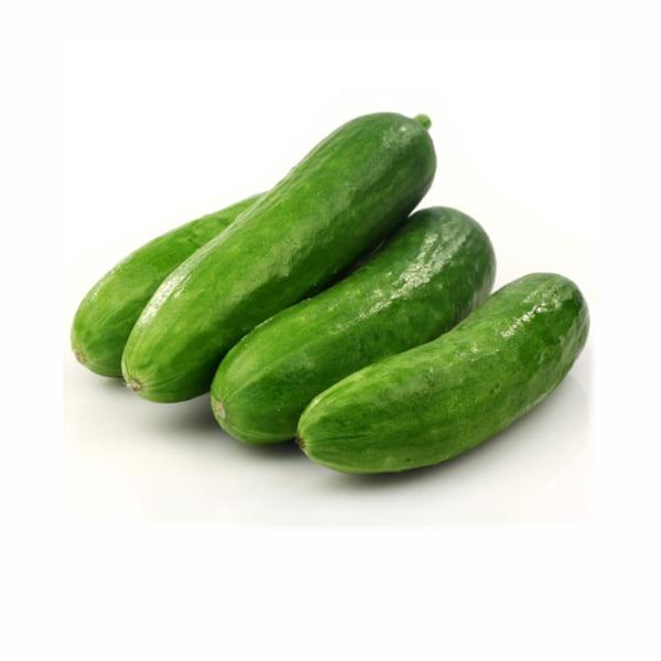 dưa chuột - cucumber