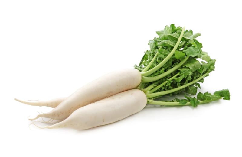 radish-tuber