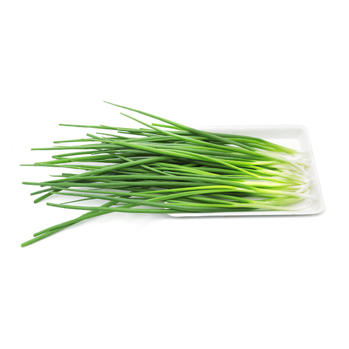 spices vegetable - spring onions