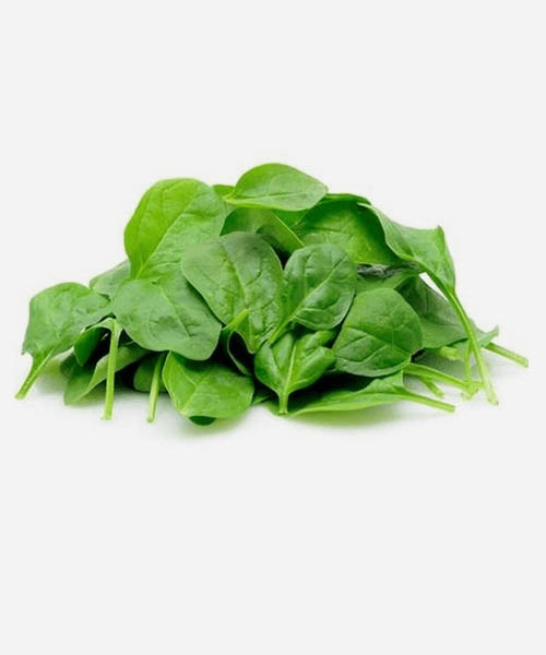 rau mùng tơi - malabar spinach - vegetable