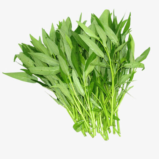 vegetable - water spinach