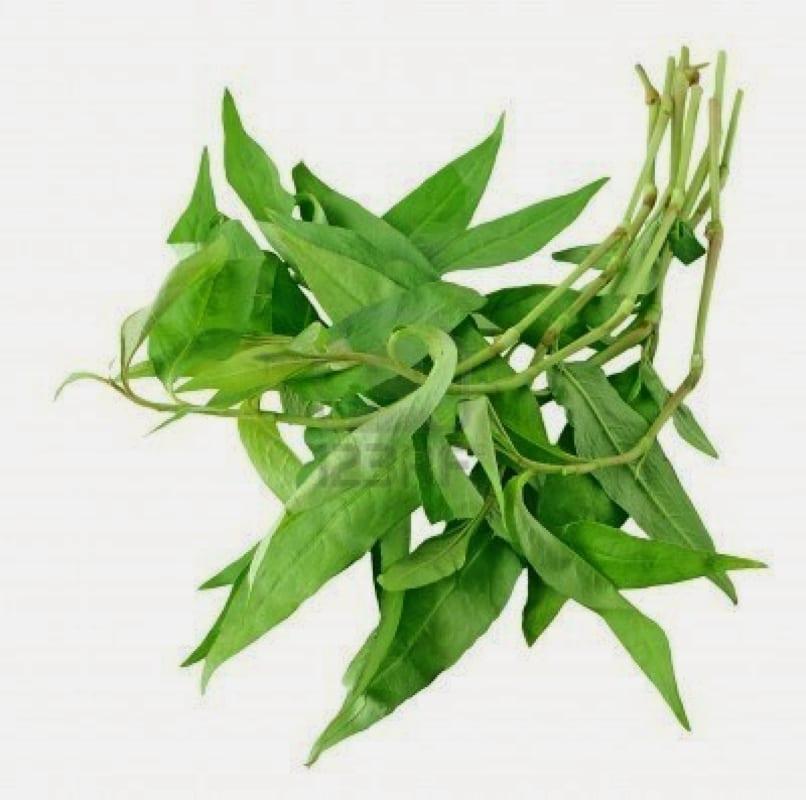 Laska leaves