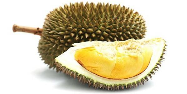 durian- fruit